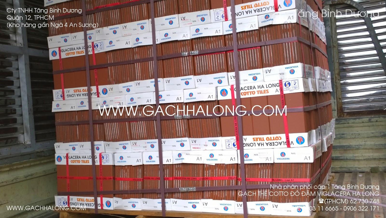 gach the cotto 6x24 do dam viglacera ha long