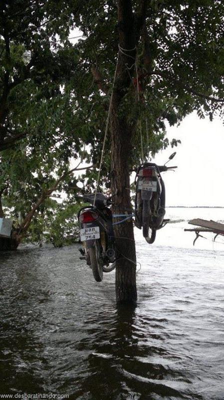 tailandia chuva inundacao criativa desbaratinando httpthai flood hack (17)