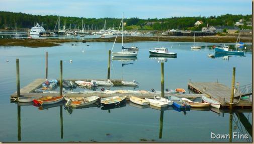 Acadia National Park_084
