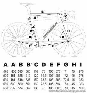 Moser 999 (1) geometría
