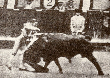 Fortuna estocada (El toreo Bollain) 001