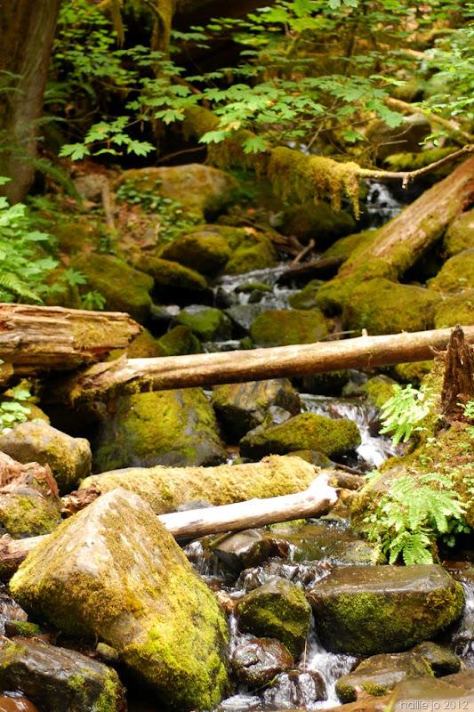 Eagle Creek9