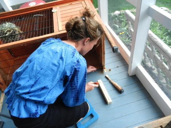 Anita Repairs hutch