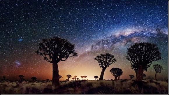 Trees_Galaxy_Milky_Way_Stars_sky_desert_1920x1080