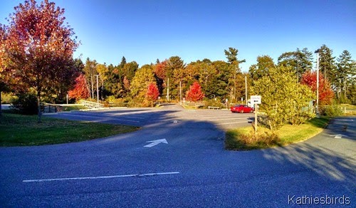 10-12-14 Autumn boat launch parking lot