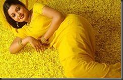 Vandana_Menon_in-yellow saree