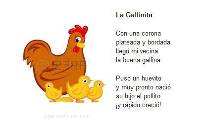 12 - gallinita