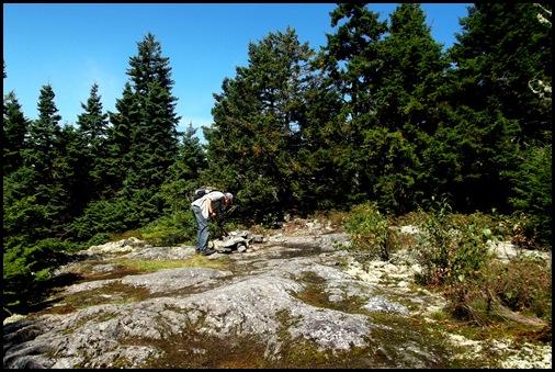 Burnt Jacket Mountain 040