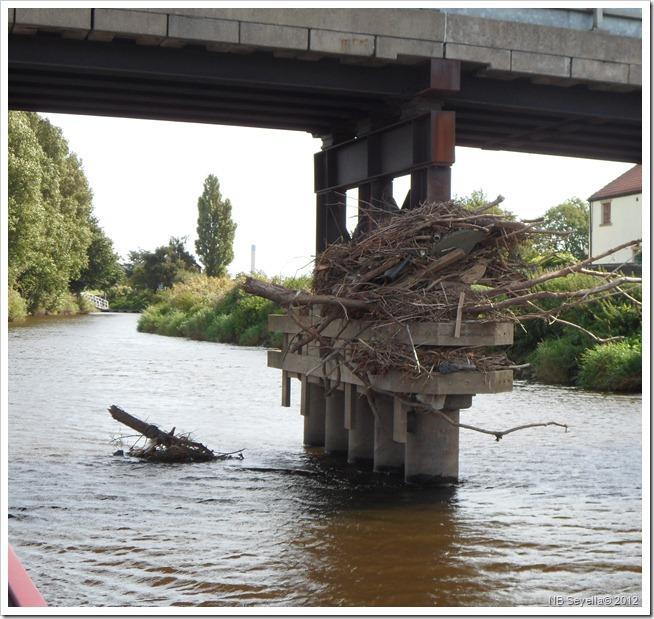 SAM_2954 Beal Bridge