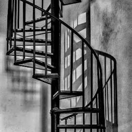 Stairs by Erwin Sutarko - Artistic Objects Other Objects ( stairs, black and white, spiral, artistic objects, architecture )