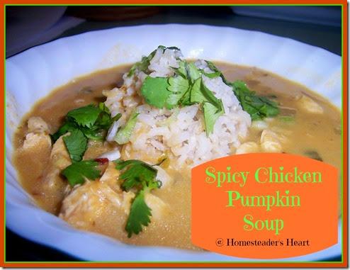 Spicy Chicken Pumpkin Soup