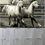 Арапова Мария, 11 лет, Календарь (1).jpg