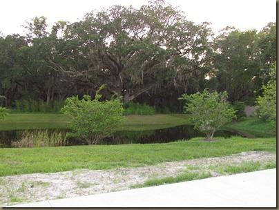 site 244 at Quail Run, view of gorgeous Live Oak Tree
