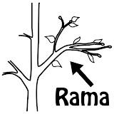 Rama.jpg