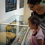 2009.08.23 - Park Dinozaurów