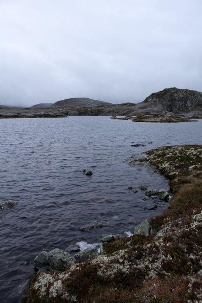 Shore dragfjord