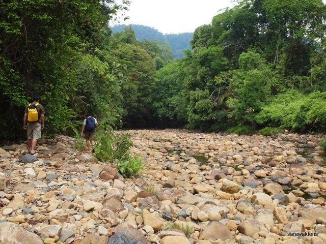 river_in_sarawak_23