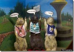 Olympic gophers