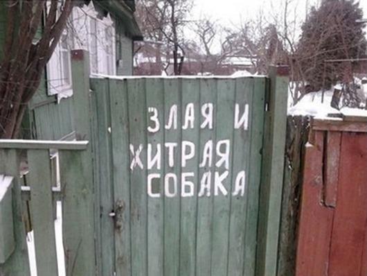 5480_138545006843