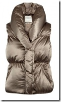 All Saints Down Gilet
