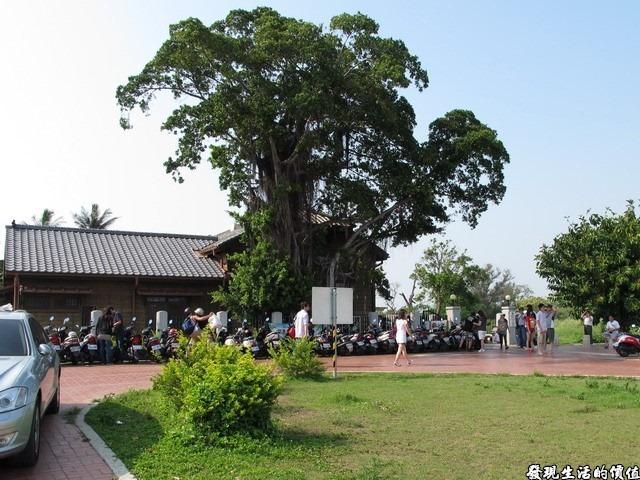 台南夕遊出張所-這是「夕遊出張所」的外觀,中間那顆大榕樹的地方就是祈願樹啦!