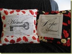 cushions 004