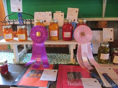 Winners at the fair