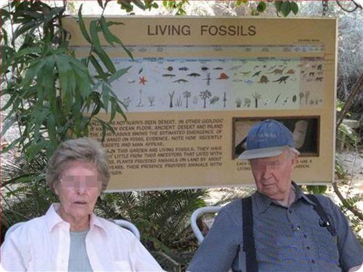 fósiles vivos