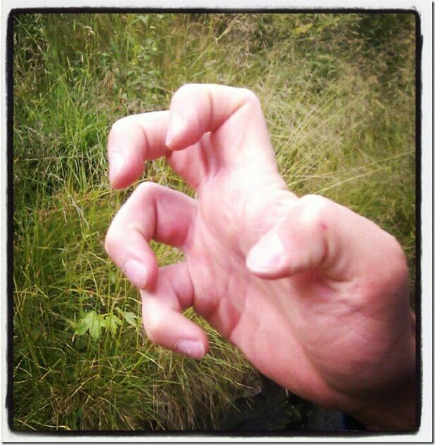 15. fingers