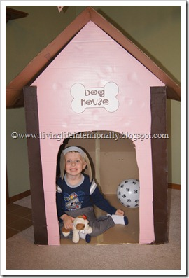 Dog House out of cardboard box