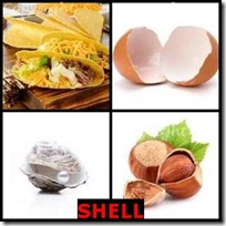 SHELL- 4 Pics 1 Word Answers 3 Letters