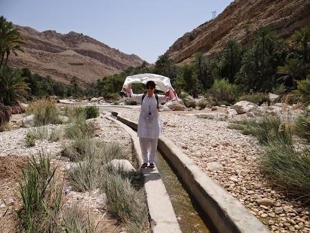 05. Canal irigatii Oman.JPG