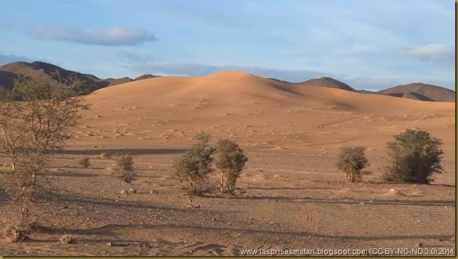 Desierto-358