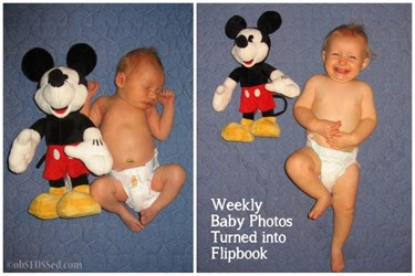 j baby weeks cover or first