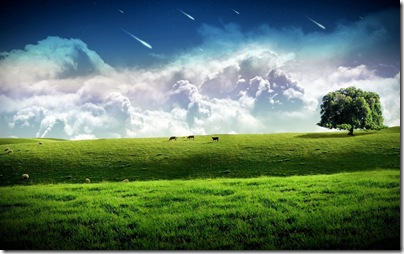 3D Nature Wallpaper (2)