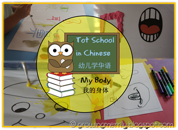 Tot School in Chinese