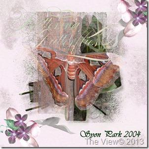 NBK_Btfly_Syon-Park