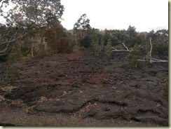 20150118_ Lava field 2 (Small)