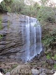 177 Royal Mt Carmel Waterfall