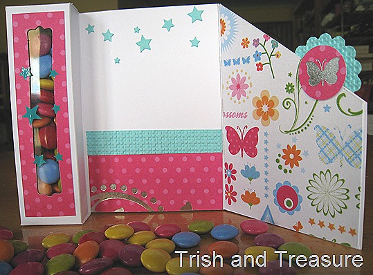 Fairy Teddy Card 005