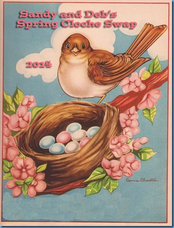 birdnestimage4