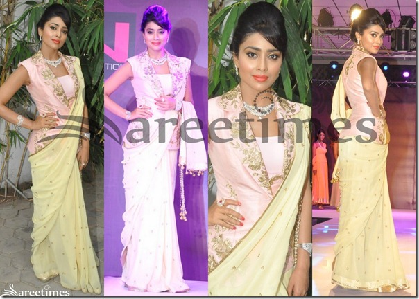 Shriya_Cream_Saree