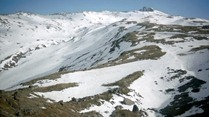Doctor.Who.2005.7x01.Asylum.Of.The.Daleks.HDTV.x264-FoV.mp4_snapshot_14.41_[2012.09.01_19.30.42]