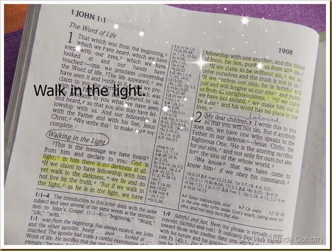 1 John 1 5 (2)