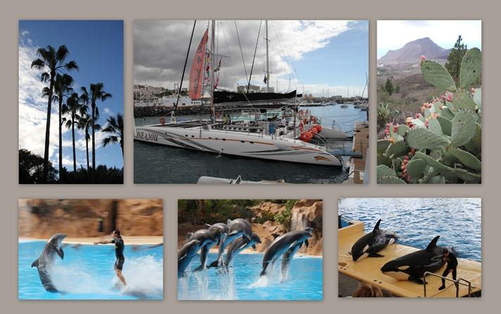 2012-11-13 Tenerife1