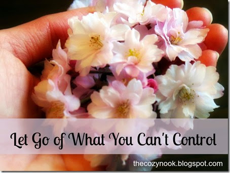 Let Go of What You Can't Control - The Cozy Nook