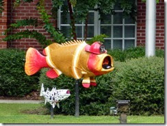 Fire Fighter Fish