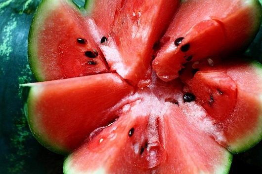 melon00