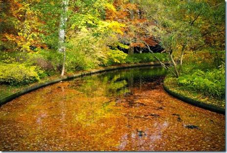 autumn-colors-fall-020