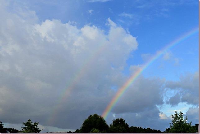 RainbowCropIMG_4839